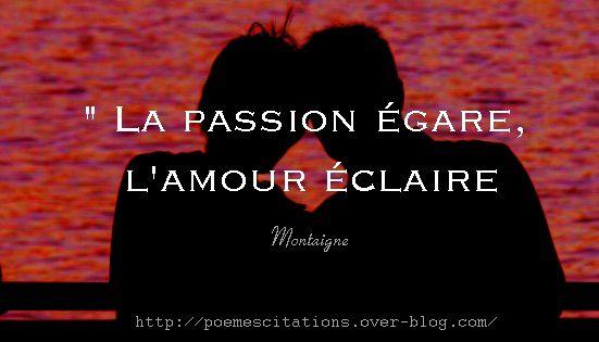 Chronique #2 : Amour ou Passion ?